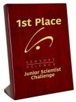 Piano Finish Rosewood Stand Up Plaque Achievement Awards